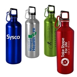 25 Oz Classic Stainless Steel Sports Bottle
